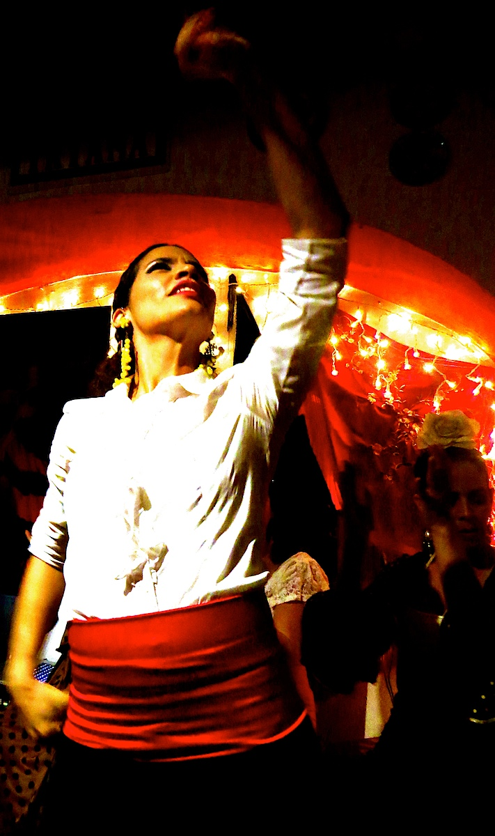 P.R. Flamenco #2